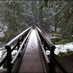 bagby hot springs trail bridge winter