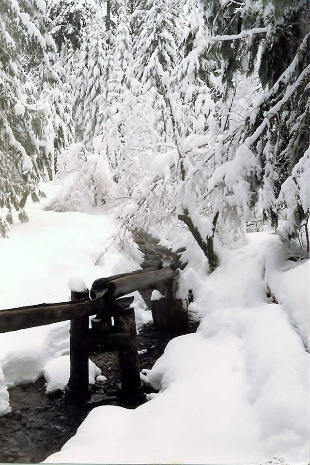 Hot Spring Highlight: Bagby Hot Springs Oregon - WinterReview