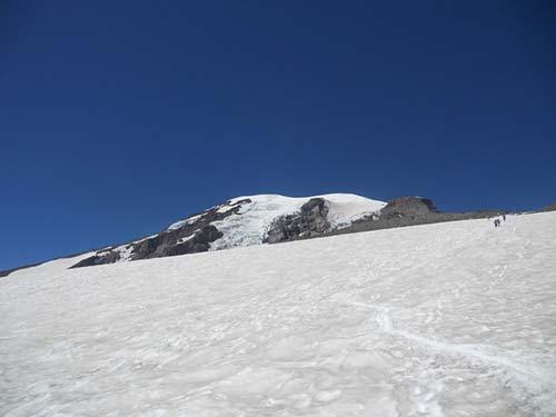 Muir Snowfield Image